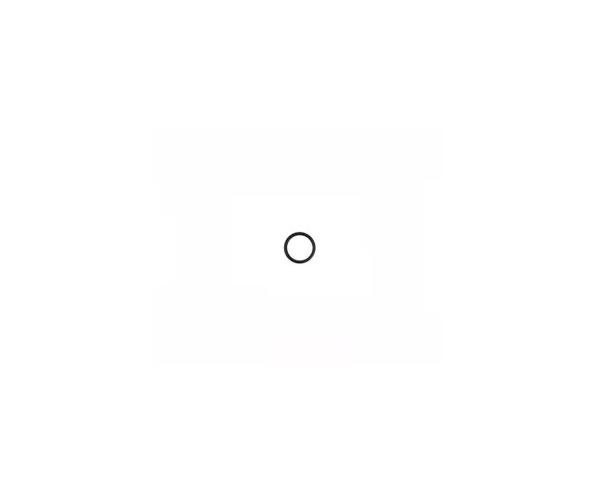 Anel Vedação Pistão Beeman 2004 Oring 20,5 X 2,8 (bee-0026)
